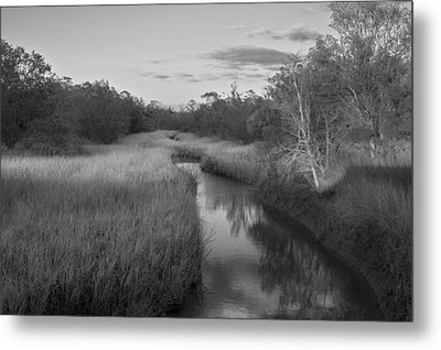 Metal Print featuring the photograph Creek At Wilmington Island by Frank Bright