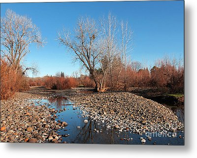 Creek Bed Metal Print by David Taylor