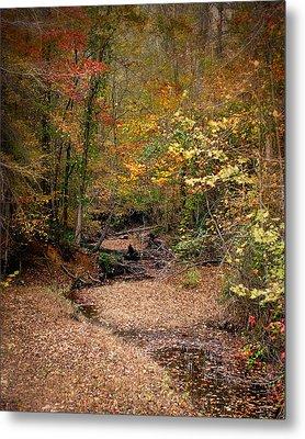 Creek Bed In Autumn - Fall Landscape Metal Print by Jai Johnson