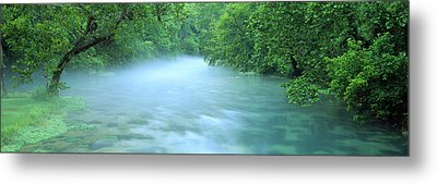 Creek Flowing Through A Forest, Ozark Metal Print
