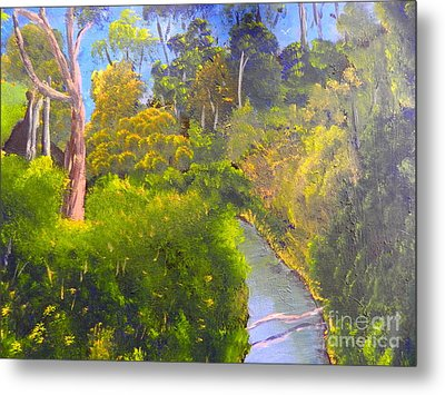 Creek In The Bush Metal Print
