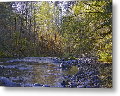 Creek Of Native Times Metal Print by Tim Rice