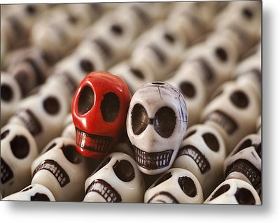 Crimson And Cream Metal Print by Mike Herdering
