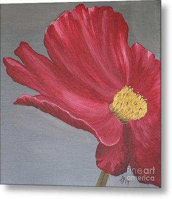 Crimson Red Garden Cosmos Metal Print by Christiane Schulze Art And Photography