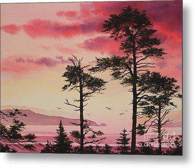 Crimson Sunset Splendor Metal Print by James Williamson