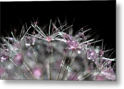 Metal Print featuring the photograph Cristal Flower by Sylvie Leandre