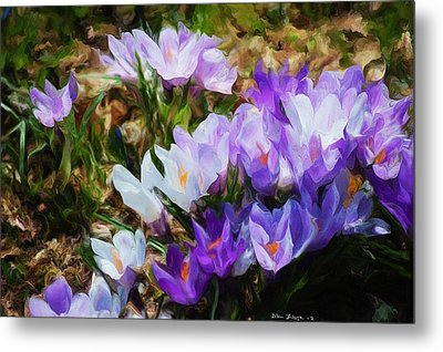 Crocus Fantasy Metal Print by David Lane