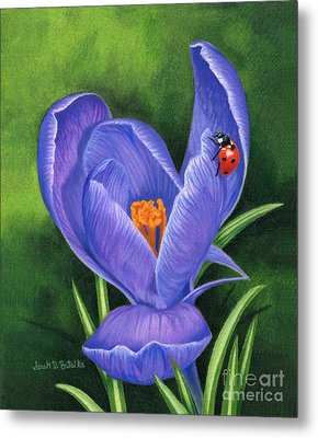 Crocus And Ladybug Metal Print by Sarah Batalka
