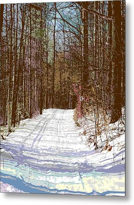 Metal Print featuring the photograph Cross Country Trail by Nina Silver