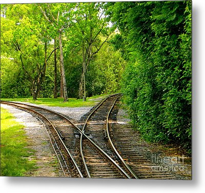 Metal Print featuring the photograph Crossing The Lines by Joy Hardee