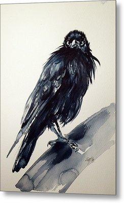 Crow Metal Print by Kovacs Anna Brigitta