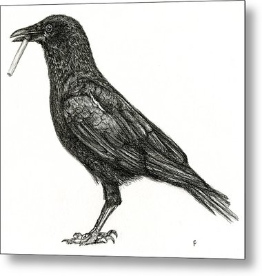Metal Print featuring the drawing Crow by Penny Collins