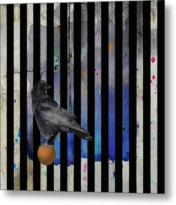 Crow Stripes Metal Print by Gothicrow Images