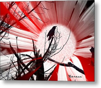 Crow Sunset Metal Print