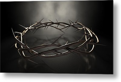 Crown Of Thorns Metal Print by Allan Swart