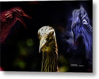 Crowned Heron - 5466 Fa Metal Print by James Ahn