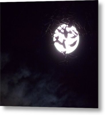 Crowning The Exulted Moon Metal Print
