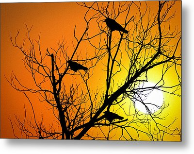 Crows At Sunset Metal Print by Bill Cannon