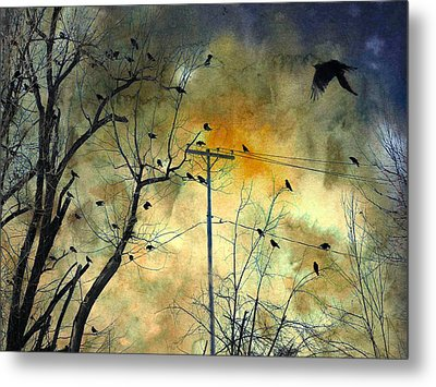 Crows Colors Metal Print by Gothicrow Images