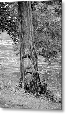 Cry Me A River Metal Print by Maria Urso