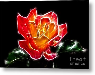 Metal Print featuring the photograph Crystal Rose by Mariola Bitner