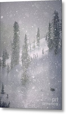 Crystalized Snowflakes Falling While Being Backlit By The Sun Metal Print