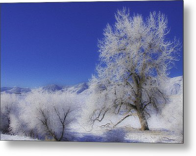 Crystalized Valley Metal Print