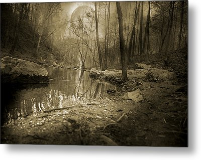 Culmination Metal Print by Betsy Knapp