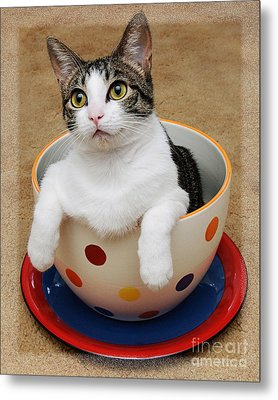 Cup O Tilly 1 Metal Print by Andee Design