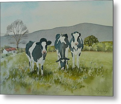 Metal Print featuring the painting Curious Cows by Jo Appleby