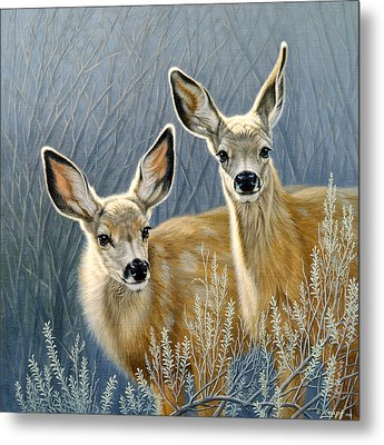 Curious Pair Metal Print by Paul Krapf