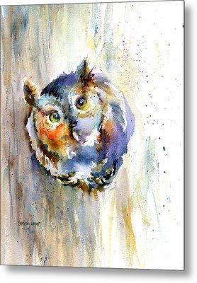 Curious Screech Owl Metal Print by Christy Lemp