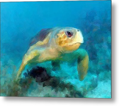 Metal Print featuring the mixed media Curious Sea Turtle by David  Van Hulst