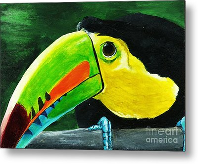 Curious Toucan Metal Print by Laura Charlesworth