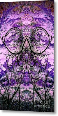 Metal Print featuring the photograph Curly Branches by Karen Newell