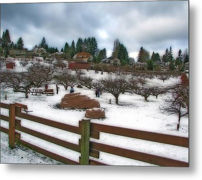 Metal Print featuring the photograph Curran Apple Orchard In Orton by Chris Anderson