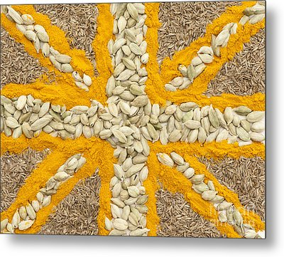 Curried Flag Metal Print by Anne Gilbert