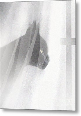 Curtain View 2 Metal Print by Robert Foster