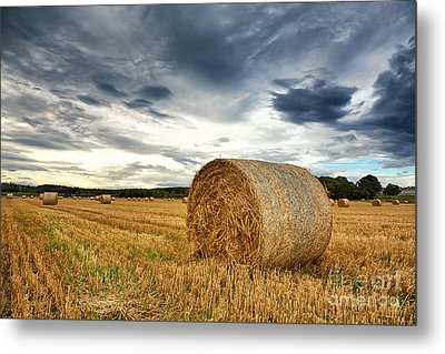 Cut Field Metal Print by Jane Rix