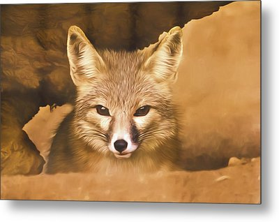 Metal Print featuring the photograph Cute Fox  by Brian Cross
