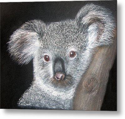 Cute Koala Metal Print by Mary Mayes