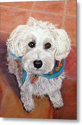 Metal Print featuring the pastel Cutie With Bandana by Julie Maas
