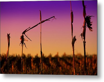 Cycles Metal Print by Mary Burr
