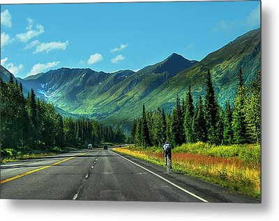 Cycling In Denali   Metal Print by Dyle   Warren