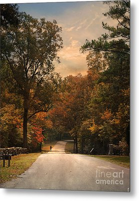 Cycling Season Metal Print by Jai Johnson