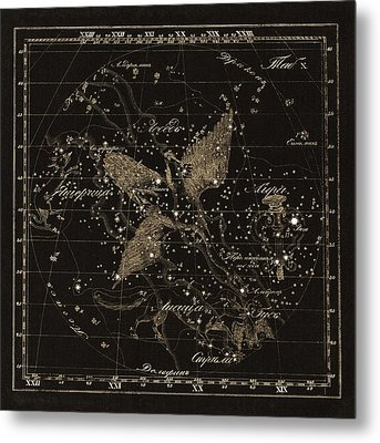 Cygnus Constellations, 1829 Metal Print by Science Photo Library