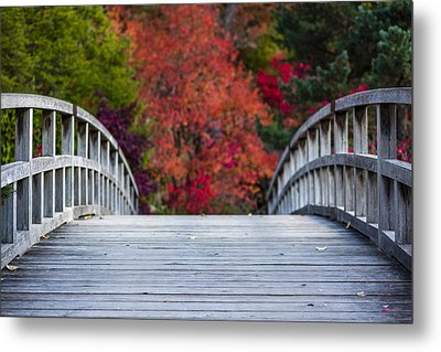 Cypress Bridge Metal Print by Sebastian Musial