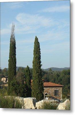 Cypress In Rapolano Metal Print