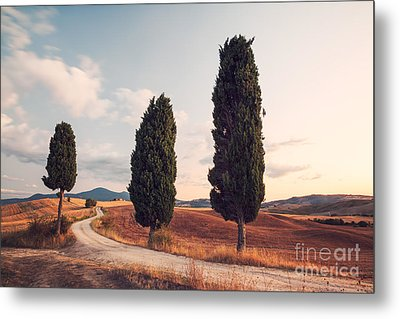 Cypress Lined Road In Tuscany Metal Print by Matteo Colombo