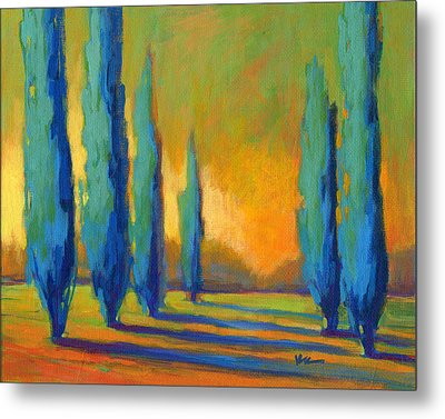 Cypress Road 5 Metal Print